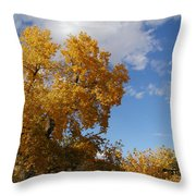 New Mexico Series - Desert Landscape Autumn Throw Pillow