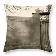 New Mexico Series - Doorway II Black And White Throw Pillow