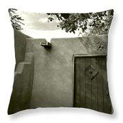 New Mexico Series - Doorway Iv Throw Pillow
