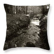 New Mexico Series - Late Winter Streambed Throw Pillow