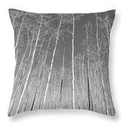 New Mexico Series - Leaf Free Black And White Throw Pillow