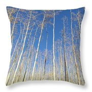 New Mexico Series - Leaf Free On The Mountain Throw Pillow
