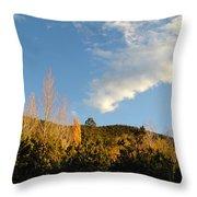 New Mexico Series - Santa Fe Landscape Autumn Throw Pillow