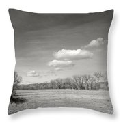 New Mexico Series - The Long View Black And White Throw Pillow