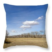 New Mexico Series - The Long View Throw Pillow