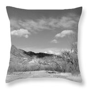 New Mexico Series - Winter Desert Beauty Black And White Throw Pillow