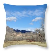 New Mexico Series - Winter Desert Beauty Throw Pillow