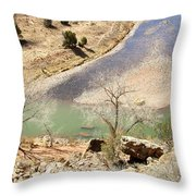 New Mexico Series A River View Throw Pillow