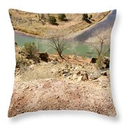New Mexico Series Turn Of The River Throw Pillow