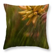 New Pines Cones In Spring  Throw Pillow