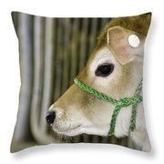 New To The Barn Throw Pillow