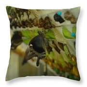 Newborn At The Butterfly Factory  Throw Pillow