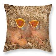Newborn Robin Nestlings Throw Pillow