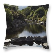 Newcastle, Shimna River, Co Down Throw Pillow