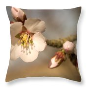 Newly Formed Buds And Flowers Bloom Throw Pillow