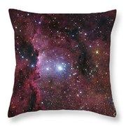 Ngc 6188, Starforming Region In Ara Throw Pillow