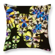 Niacin Throw Pillow