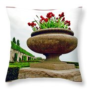 Niagara Falls Floral Urn Throw Pillow