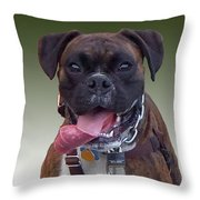 Nice Doggy Throw Pillow