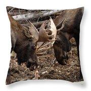 Nice Match Throw Pillow