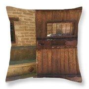 Nice Old Door Throw Pillow