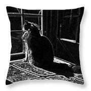 Nickel In The Moonlight Throw Pillow