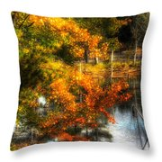 Niels' Third Pond Throw Pillow