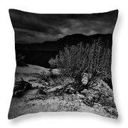 Nieve Of Adam Throw Pillow