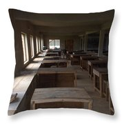 Nigerian Classroom Science Lab Throw Pillow
