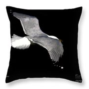 Night Flight Throw Pillow by Dale   Ford
