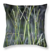 Night Walk Through The High Grass Throw Pillow