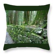 Nikko Moss Throw Pillow
