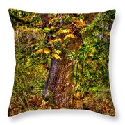 Nisqually Wildlife Refuge P12 The Maple Tree Throw Pillow
