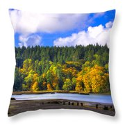 Nisqually Wildlife Refuge P24 Throw Pillow
