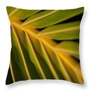 Niu - Cocos Nucifera - Hawaiian Coconut Palm Frond Throw Pillow