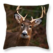 No Hunting Allowed Throw Pillow