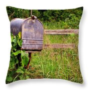No Mail Today Throw Pillow