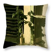 Non Rosa Throw Pillow