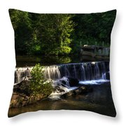 Nora Mill Falls Throw Pillow