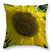 Normal Sun Throw Pillow