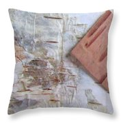 Normand's  Birch Bark  Throw Pillow