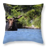 North American Hippo II Throw Pillow