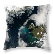 North Atlantic Bloom Throw Pillow by Science Source