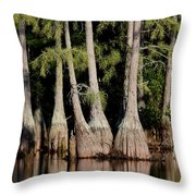 North Carolina - Lake Throw Pillow