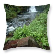 North Falls In Oregon Throw Pillow
