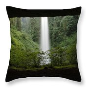 North Falls Oregon 2 Throw Pillow