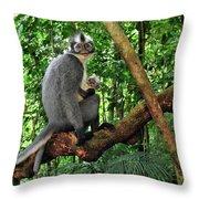 North Sumatran Leaf Monkey Presbytis Throw Pillow