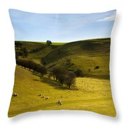 North Yorkshire Throw Pillow