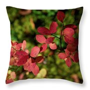 Northern Bilberry Throw Pillow
