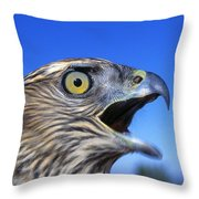 Northern Goshawk With Open Beak Throw Pillow